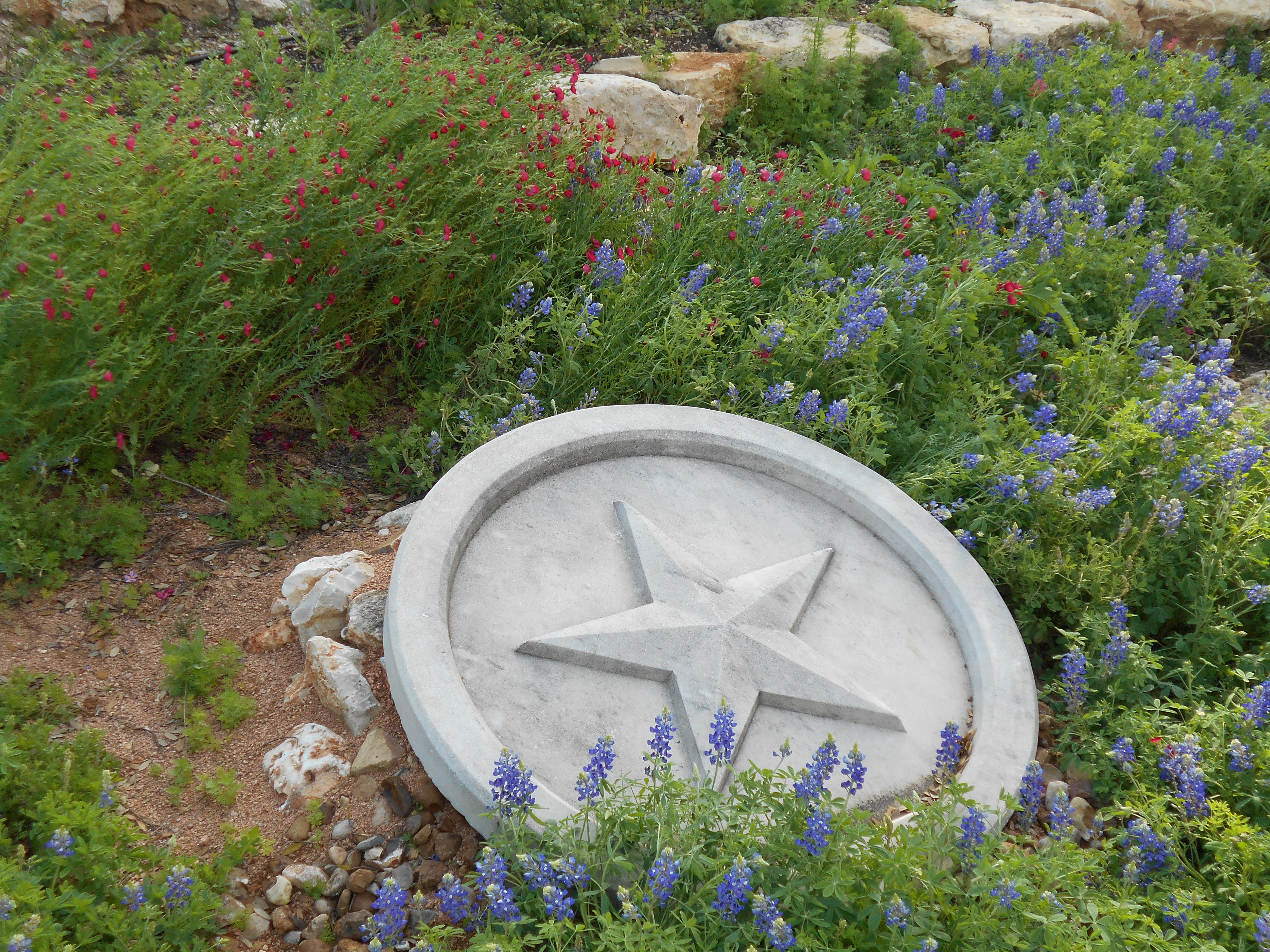 Personals in garden ridge texas